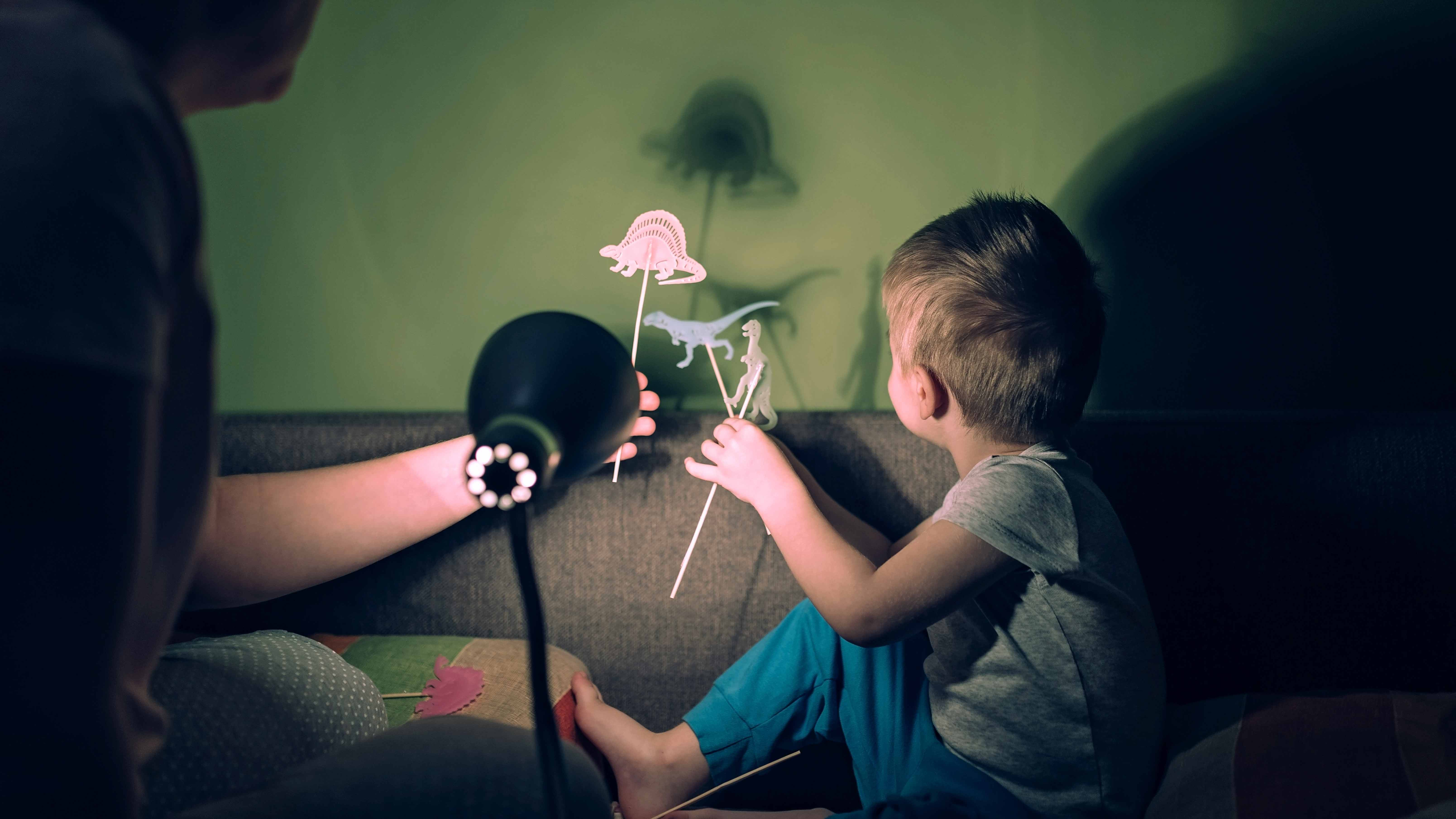 Small child making puppet shadows
